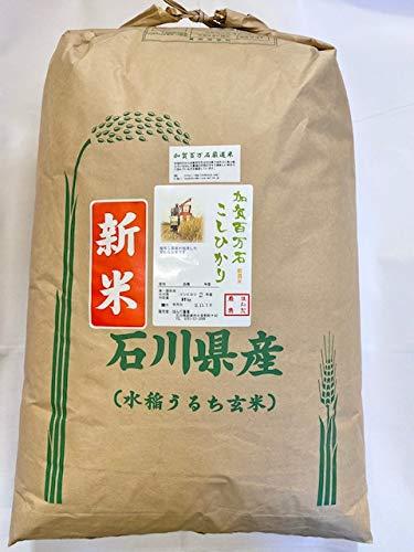 令和2年産 石川県産 加賀百万石 厳選 コシヒカリ 精米用玄米 30kg