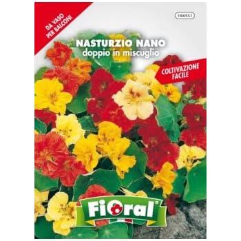 XD E-commerce Etichette vegetali Colorate Etichette per Piante Spesse Etichette vegetali per Fiori Impianto di plastica Ecologico Random Color,17.72inch