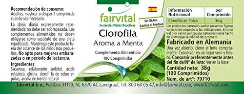 Chlorophyll Kautabletten mit Minzaroma – Großpackung für 100 Tage – VEGAN – 100 Kautabletten - 4