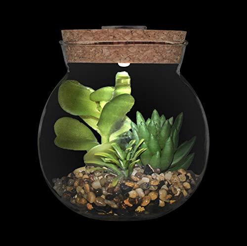 Künstliche Sukkulenten Pflanzen mit Töpfen aus Glas mit LED Aromatherapie Kork Design,Mini Gefälschte Pflanzen Faux Kaktus Topf Bonsai Innen Desktop Dekor für Arbeitszimmer und Wohnzimmer,Weiß Licht