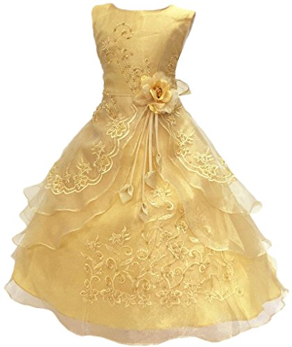 Shiny Toddler Little Girls Embroidered Beaded Flower Girl Birthday Party Dress with Petticoat 5t to 6t(Tag120),Golden