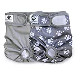 Hisprout Female Dog Diaper Reusable Washable Durable Doggie Diapers Pants (DDFM05)