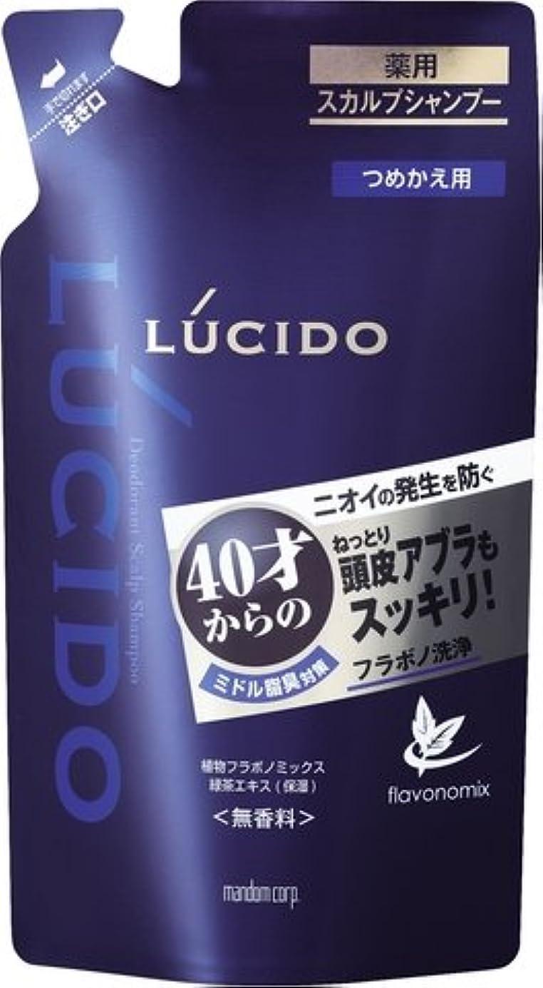 眉をひそめる剣魅力ルシード 薬用スカルプデオシャンプー つめかえ用 (医薬部外品) × 10個セット
