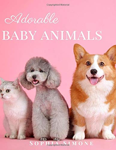 Adorable Baby Animals: A Beautiful Picture Book Photography Coffee Table Photobook Animal Guide Book with Photos  Images of Cute Kittens, Puppies of Cats and Dogs.