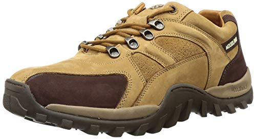 Woodland Men's Camel Leather Sneakers-5 UK/India (39 EU) (GC 2657117)
