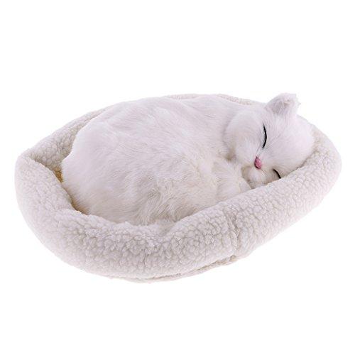Homyl Süße Plüschtier schlafende Tiere Kuscheltier Plüschfigur Spielzeug Auto Haus Tisch Dekoration - Perserkatze