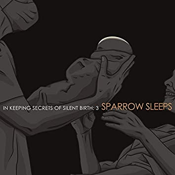 In Keeping Secrets of Silent Birth 3: Lullaby renditions of Coheed and Cambria songs