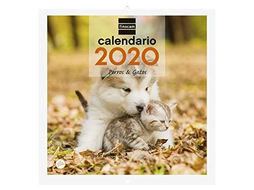 Finocam Imágenes 30x30 Perros y Gatos, Calendario de Pared 2020 Español