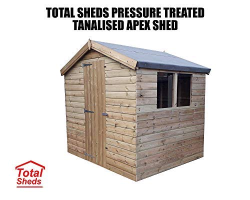 Total Sheds Apex Shed Pressure Treated Tanalised Timber Fast & Free Delivery Multiple (8x6 Double doors No Windows)