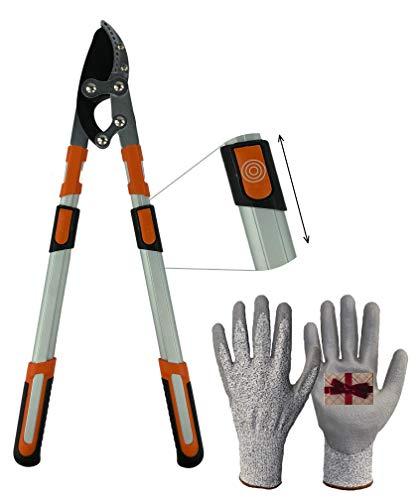 ML Amboss-Astschere mit Teleskopgriff inklusive schnittfesten Handschuhen. Gartenschere für alle Arten von Holz.
