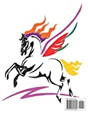 Zoom IMG-1 cavalli libri da colorare per