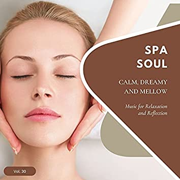 Spa Soul - Calm, Dreamy And Mellow Music For Relaxation And Reflextion, Vol. 30