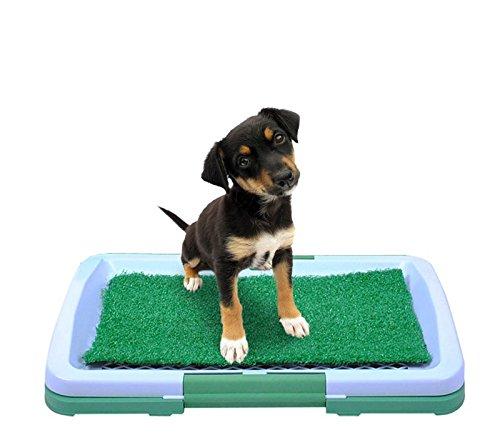 ISO TRADE Welpentoilette Hunde Welpen Wc Hundeklo Haustiermatte Welpen Hundeabtropfschale 922