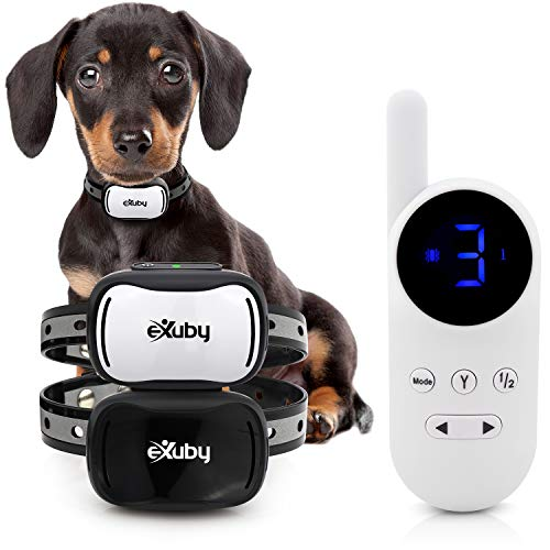 eXuby Tiny Dual Shock Collar - Smallest Collar on The Market - Sound, Vibration, Shock - 9 Intensity Levels - Pocket-Size Remote - Long Battery Life - Waterproof (White Remote)