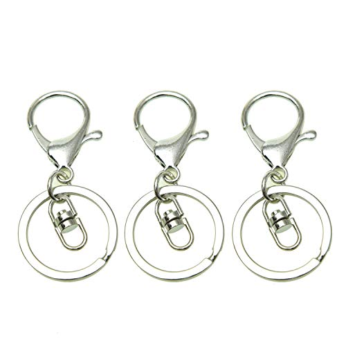 WEFOO 25 Set Metal Lobster Clasp Keychain Lobster Claw Clasps Findings for Keychain DIY Bags