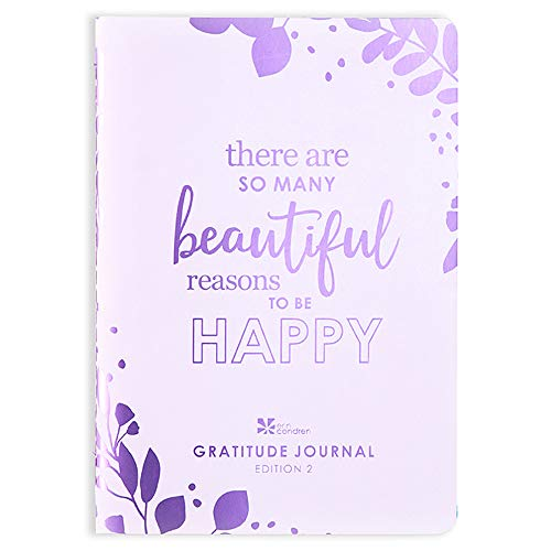 Erin Condren Designer Petite Planner - Gratitude Journal Edition 2, Inspirational Quote Front Cover, Goal and Intention Setting, Functional Stickers for Customization