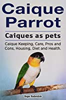 Caique parrot. Caiques as pets. Caique Keeping, Care, Pros and Cons, Housing, Diet and Health.