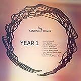Wallfire (Shamik Remix) [feat. Shamik]