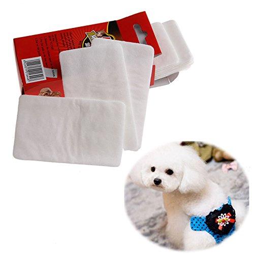 R-WEICHONG Welpen Haustier Windel Pad,Haustierwegwerfwindeln Hundekatze Windelauflage Papierauflage 1 Satz