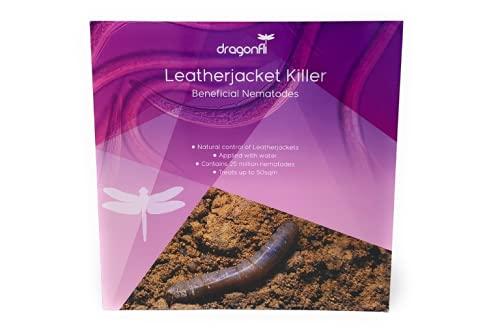 Natural pest control Dragonfli Leatherjacket Killer 50 Square Meter...