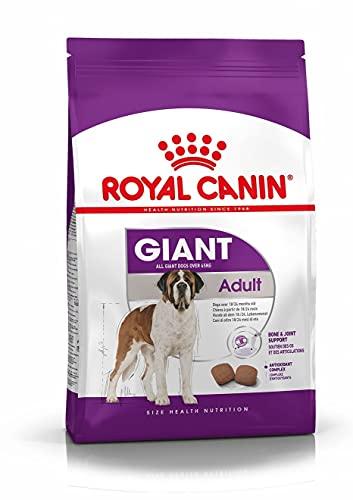 Royal Canin Alimento Cane Giant Adult - 15000 gr