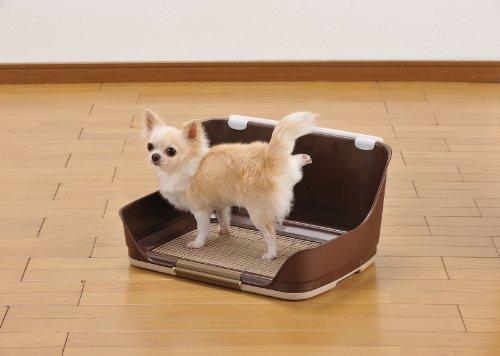 ボンビアルコン(Bonbi)しつけるウォールトレーブラウン犬用Sサイズ