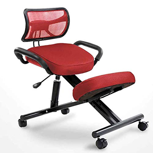 YGU Ergonomic Chair, Office Chair, Adjustable Stool, with Metal Frame, Handle Back Chair, Round Knee Chair, Computer Chair, A Variety of Colors to Choose from