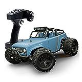 PETRLOY 1/18 4WD RC Car 2.4G Voitures Tout-Terrain radiocommandées 50 km/h Véhicule de Sport électrique Tout-Terrain à Grande Vitesse avec lumière LED Monster Buggy télécommandé omnidirectionnel pour