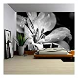 wall26 Flower with Raindrops - Removable Wall Mural   Self-Adhesive Large Wallpaper - 100x144 inches