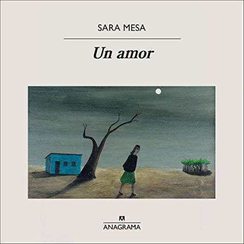 Un amor [A Love] cover art