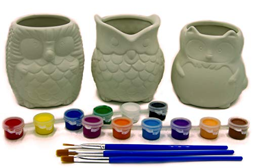 Matty's Garden DIY Paint Your Own Animal Ceramic Succulent Planters Set of 3   3.25 Inch Cactus Pots with Drainage Hole Cute Gift Owl Fox Hedgehog (DIY Set of 3 Backyard Animals)