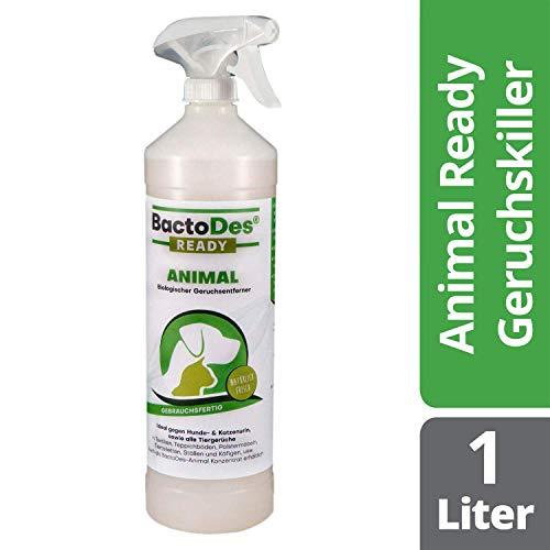 BactoDes Animal Ready - Geruchsentferner Fleckenentferner Spray, Gebrauchsfertig, Enzymreiniger gegen Katzenurin, Hundeurin, Tiergerüche, 1 Liter