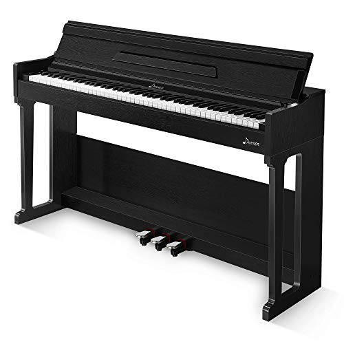 Donner DDP-90 88 Key Digital Piano Full Weighted Electric Keyboard for Beginner/Professional, Triple Pedals, USB/ MP3/ Headphone/Audio Output/MIDI, Electronic Piano for Kid/Adult at Home/Stage