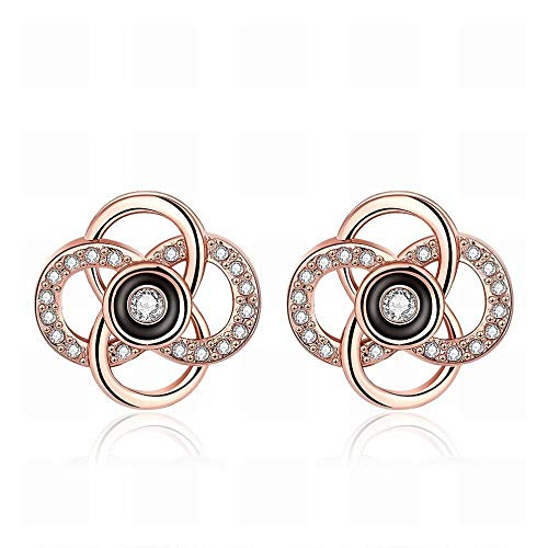TIANYOU A Pair of Popular Elegant Hollow Drop Oil Ladies Earrings Rose Gold/Stainless Steel/Hypoallergenic/Silver Glitter/Diamond/Small and Exquisite Novelty Jewelry/A /