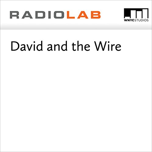 David and the Wire  audiobook cover art