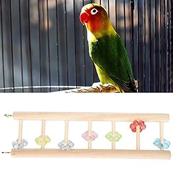 xiji Échelle de perroquets, échelle d'escalade d'oiseaux Attrayante Naturelle pour Les Oiseaux(37 * 10CM)