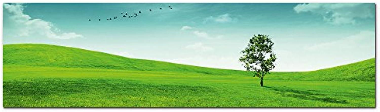 GRAZDesign Wandbilder Wiese Baum grün - Acrylglasbild Panoramabild Natur Wanddekoration Kunstdruck - Hohe Qualitt   180x50cm   100043_004_01_04