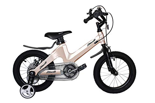 NiceC BMX Kids Bike with Dual Disc Brake...