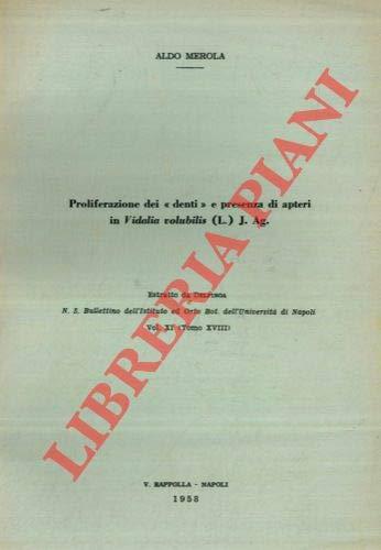 Proliferazione dei denti e presenza di apteri in Vidalia volubilis (L.) J. Ag.