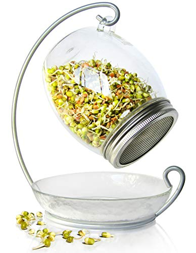 Premium Sprouting Jar Kit - Unique 30 oz Wide Mouth Sprouting Jar, Stand, Tray and 316 Stainless Screen Lid   Decorative Indoor Seed Sprouter and Germinator (1 Kit)