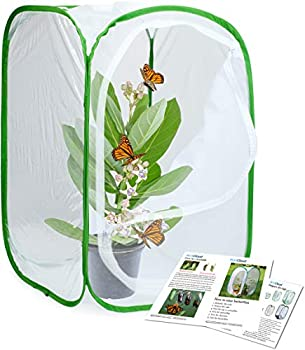 RESTCLOUD Insect and Butterfly Habitat Cage Terrarium Pop-up 23.6 Inches Tall