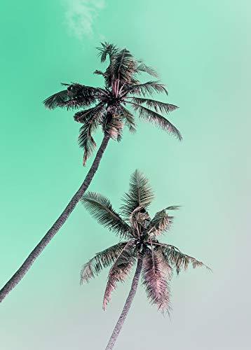 Komar Wandbild | Miami Palms | Poster, Bild, Wohnzimmer, Schlafzimmer, Dekoration, Kunstdruck | ohne Rahmen | P115-50x70 | Größe: 50 x 70 cm (Breite x Höhe)
