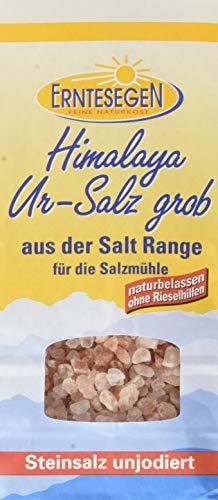 Erntesegen Grobes Ur-Salz aus der Salt Range (1 x 300 g)