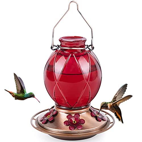 BOLITE 18016-R Hummingbird Feeder, Glass Hummingbird Feeder for Outdoors, Meshy Texture Ball Shape Bottle, 18 Ounces, Red