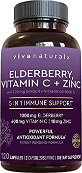 Viva Naturals Elderberry Vitamin C Zinc Vitamin D 5000 IU & Ginger - Antioxidant & Immune Support Supplement 2 Month Supply  120 Capsules  - 5 in 1 Daily Immune Support for Adults