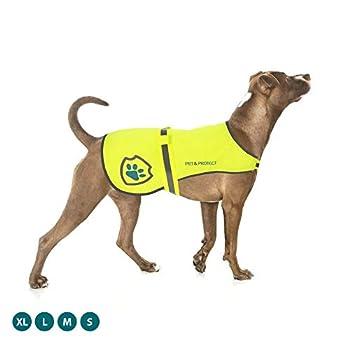 Gilet réfléchissant pour chien (7 à 59kg)