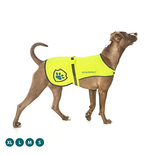 Pet & Protect Premium Dog Reflective Vest (Neon) High-Visibility Safety | Walking, Jogging, Training | Sizes to fit Small, Medium, Large Breeds 16-130 lbs. (Large)