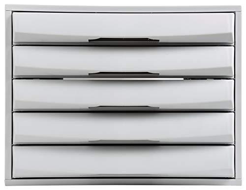 Exacompta 222079D Office ladenbox (387 x 284 x 218 mm, robuust en belastbaar, ideaal voor uw organisatie, met 5 laden, voor DIN A4) lichtgrijs/ijsblauw 5 opladen. 387 x 284 x 218 mm lichtgrijs