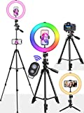 Selfie Ring Light 15 RGB Colors with 50'' Tripod Stand/Camera Tripod and Phone Holders, 3 Modes 10 Brightness Levels TIK Tok Lights, Portable Circle Light for YouTube Video Recording/Streaming/Makeup