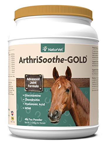 best joint supplement for horses with arthritis